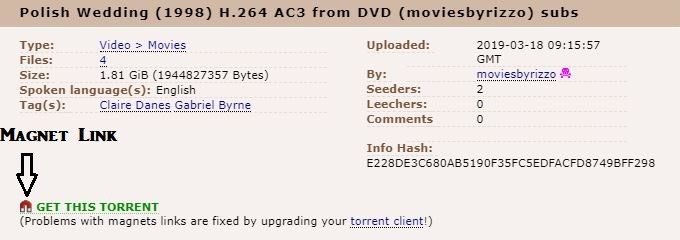 Use Magnet Link to Fix Torrent is not Valid Bencoding